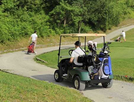 Daily Fee Golf Clubs: Design and Consulting